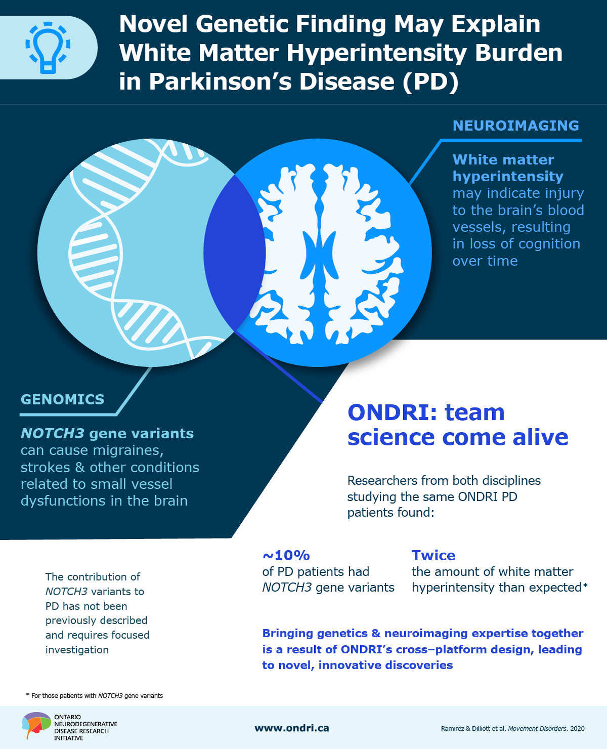 Parkinson's Disease, NOTCH3 Genetic Variants, and White Matter Hyperintensities